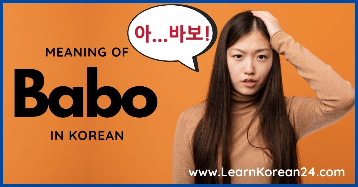 What Does Babo Mean In Korean